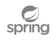 Logo-spring-2BN